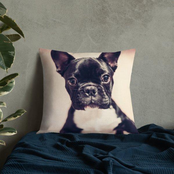 Cute Dog Pillow